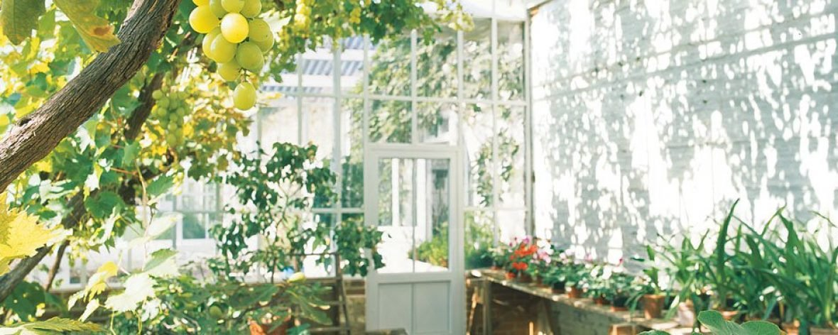 Bespoke Lean to Greenhouse