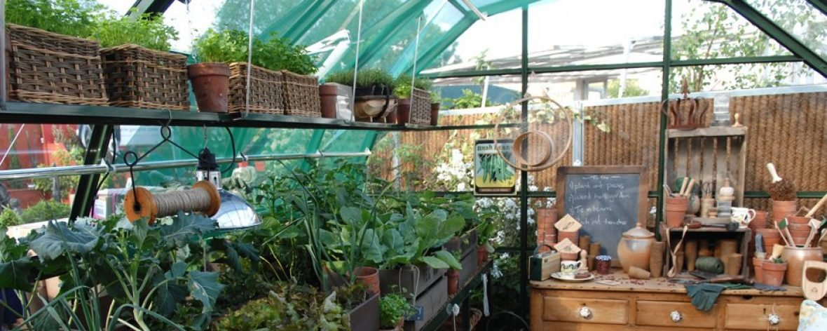 Shelving System and Potting Table in a Hartley Botanic Highgrow Aluminium Greenhouse