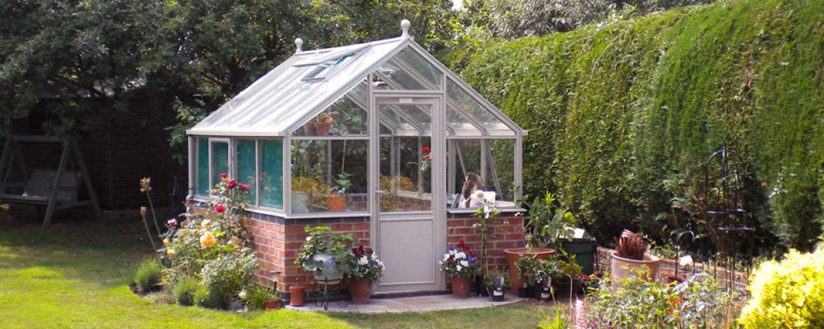 A White Hartley Botanic 8x8 Tradition 8 Greenhouse in a Garden.