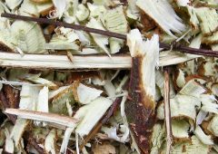 Chipped branch wood is a soil reviver.