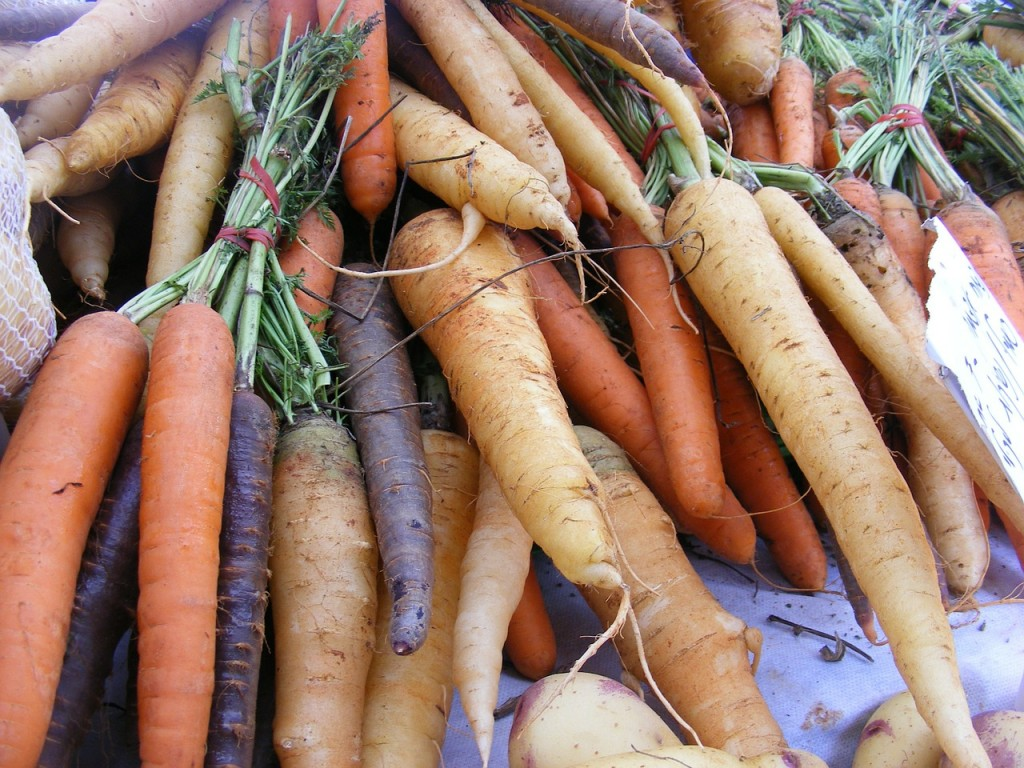 A Variety of Carrots