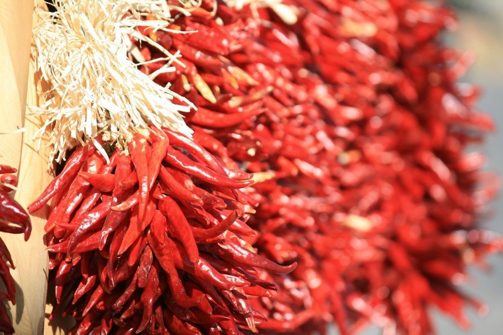 Chillies in storage
