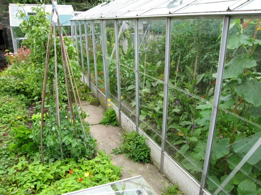 Fully Restored Greenhouse