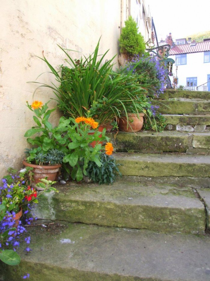 Thrifty gardening also helps the environment by martyn for Garden outlay ideas