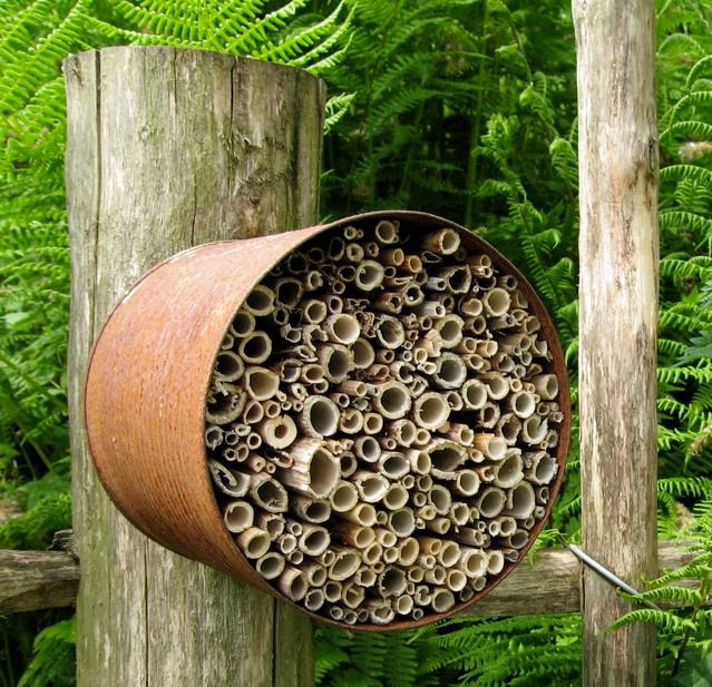 Among the clumps of perennials and shrubs edging into growth were bug hotels of all shapes and sizes...