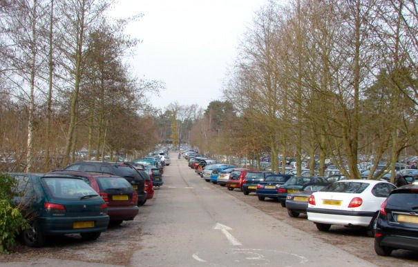 No question asked if I would welcome improved public transport to the RHS's gardens, which would both cut pollution and ease pressure on the sprawling car parks, such as here at Wisley, in Surrey.