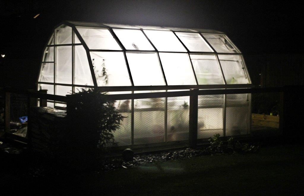 greenhouse-at-night