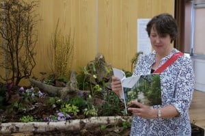 Barbara the Nottingham HPS Chair reading the Hartley Greenhouse brochure (1)
