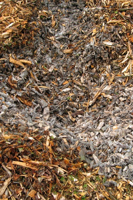 Woodchips, which soon become home to microbial decomposers, play a key role in transforming our bodies into compost.