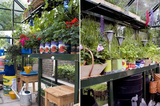Robust Staging & Shelves in a Hartley Tradition 6 Greenhouse