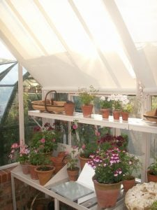 Hartley roof shades, shoulder height shelving, lath top benching and potting bench - Jul 2016