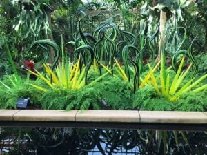 Black and green striped herons, Chihuly - Oct 2016