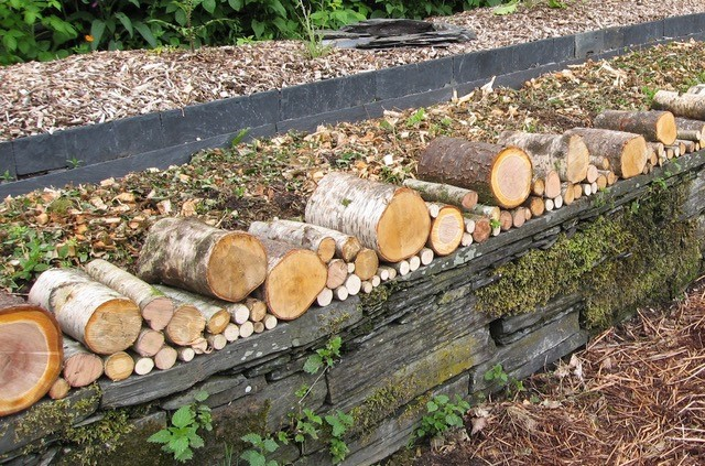 I began my wonder wall by laying thinner logs as a base, adding thicker ones as I went along.