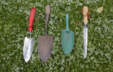 What Garden Tools Are Best In A Greenhouse?